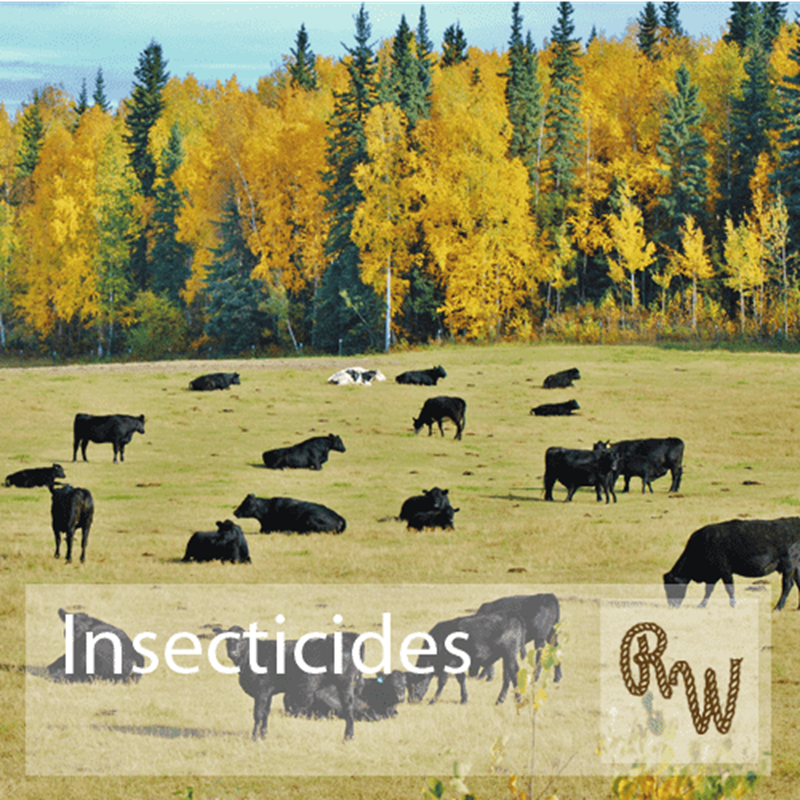 Picture for category Insecticides